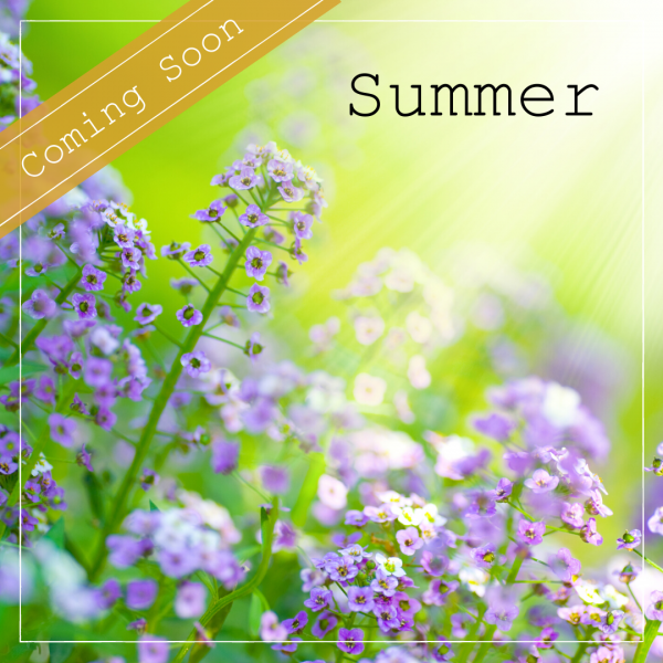 Summer image coming soon